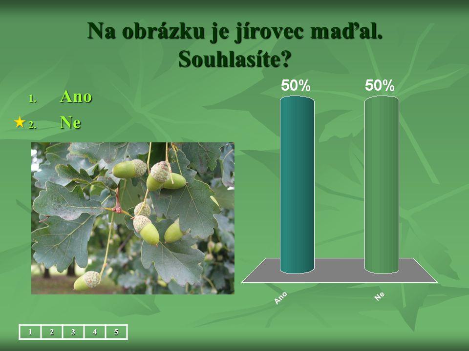 Na obrázku je jírovec maďal. Souhlasíte? 1. Ano 2. Ne 12345