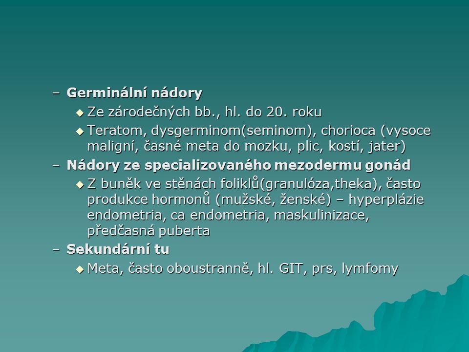–Germinální nádory  Ze zárodečných bb., hl.do 20.