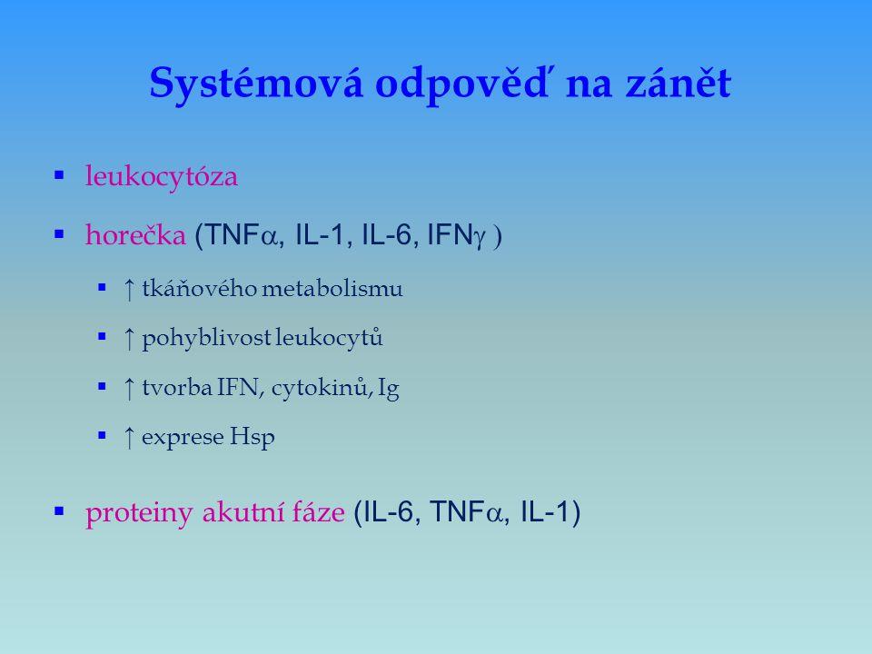 Systémová odpověď na zánět  leukocytóza  horečka (TNF , IL-1, IL-6, IFN   ↑ tkáňového metabolismu  ↑ pohyblivost leukocytů  ↑ tvorba IFN, cyt