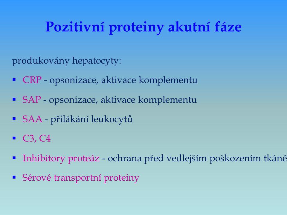 Pozitivní proteiny akutní fáze produkovány hepatocyty:  CRP - opsonizace, aktivace komplementu  SAP - opsonizace, aktivace komplementu  SAA - přilá