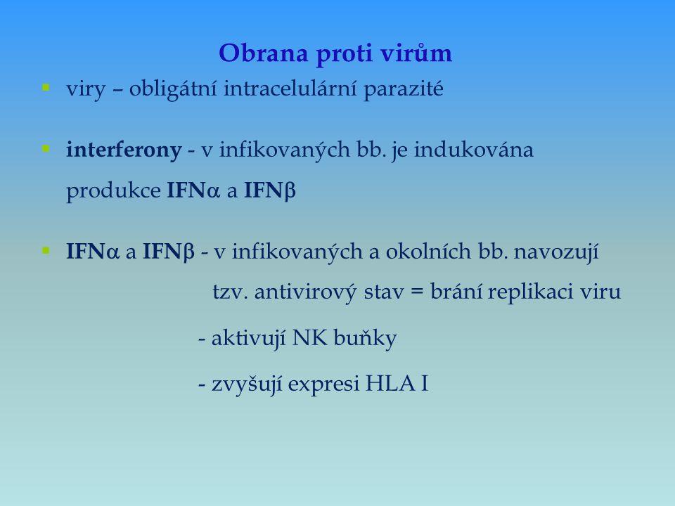  viry – obligátní intracelulární parazité  interferony - v infikovaných bb. je indukována produkce IFN  a IFN   IFN  a IFN  - v infikovaných a