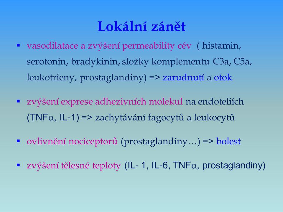 Lokální zánět  vasodilatace a zvýšení permeability cév ( histamin, serotonin, bradykinin, složky komplementu C3a, C5a, leukotrieny, prostaglandiny) =