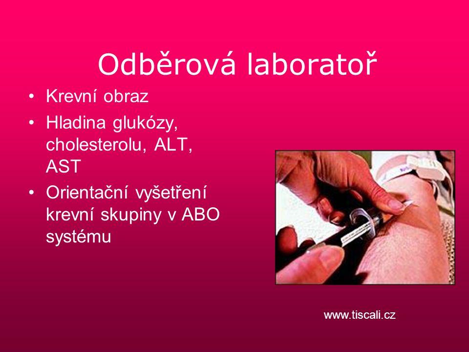 Odběrová laboratoř Krevní obraz Hladina glukózy, cholesterolu, ALT, AST Orientační vyšetření krevní skupiny v ABO systému www.tiscali.cz