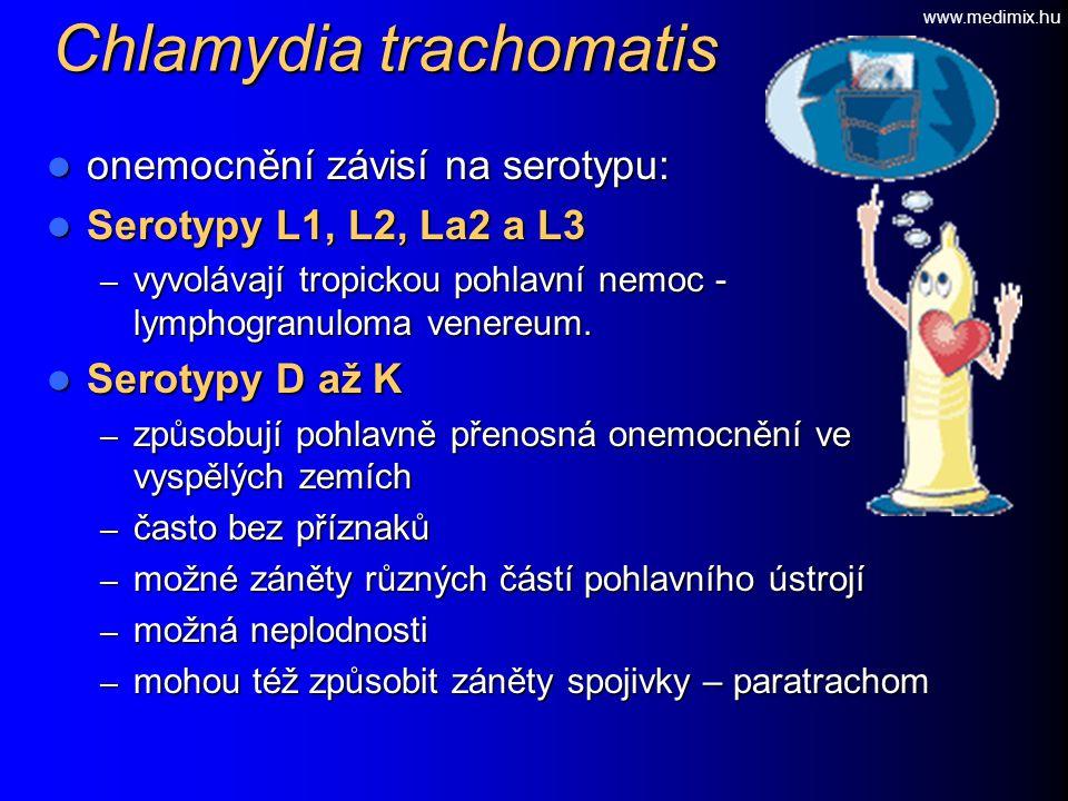 Chlamydia trachomatis onemocnění závisí na serotypu: onemocnění závisí na serotypu: Serotypy L1, L2, La2 a L3 Serotypy L1, L2, La2 a L3 – vyvolávají t