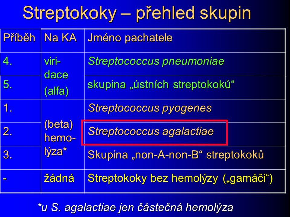 Streptokoky – přehled skupin Příběh Na KA Jméno pachatele 4.
