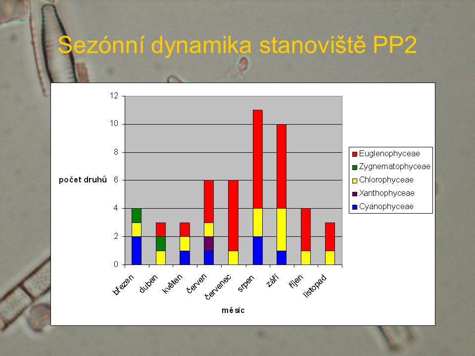 Sezónní dynamika stanoviště PP2