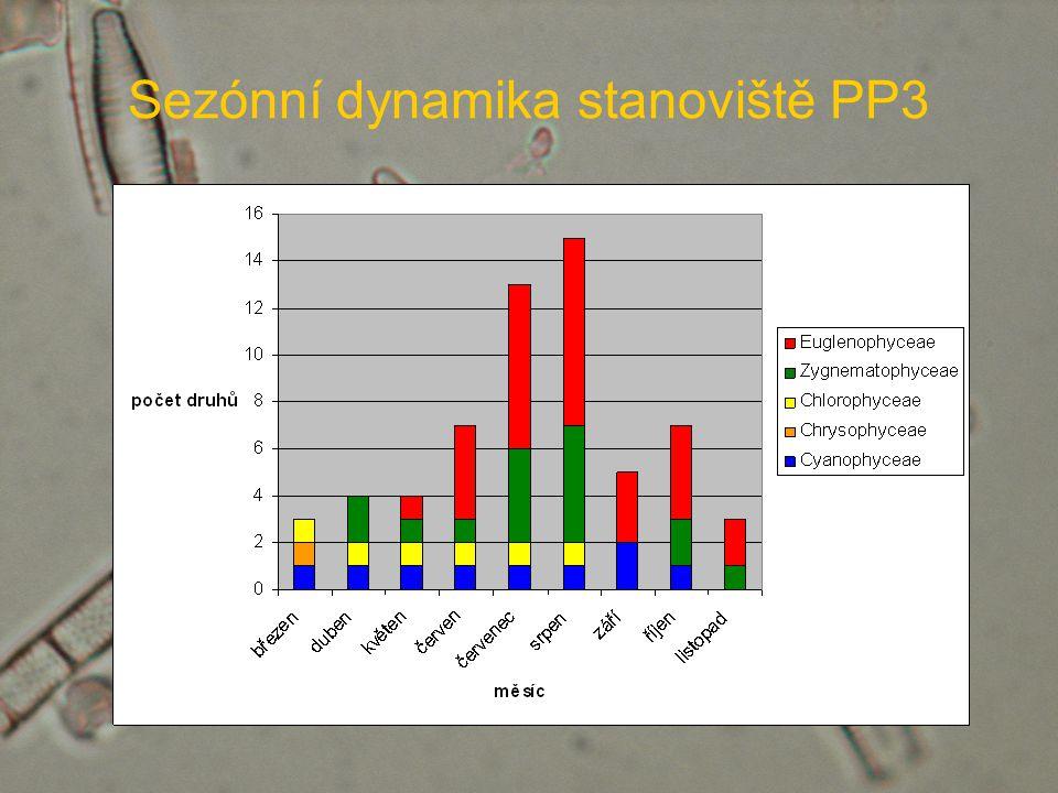Sezónní dynamika stanoviště PP3