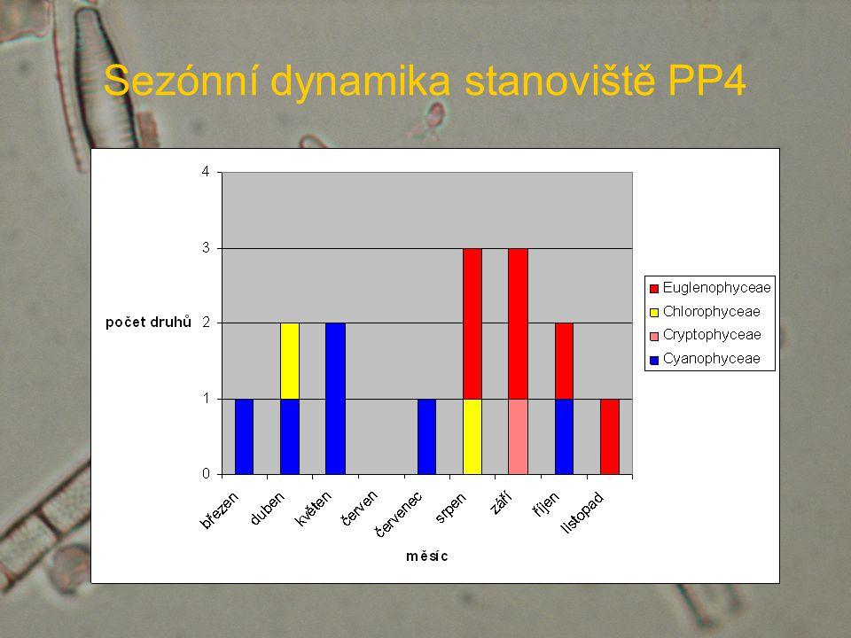 Sezónní dynamika stanoviště PP4