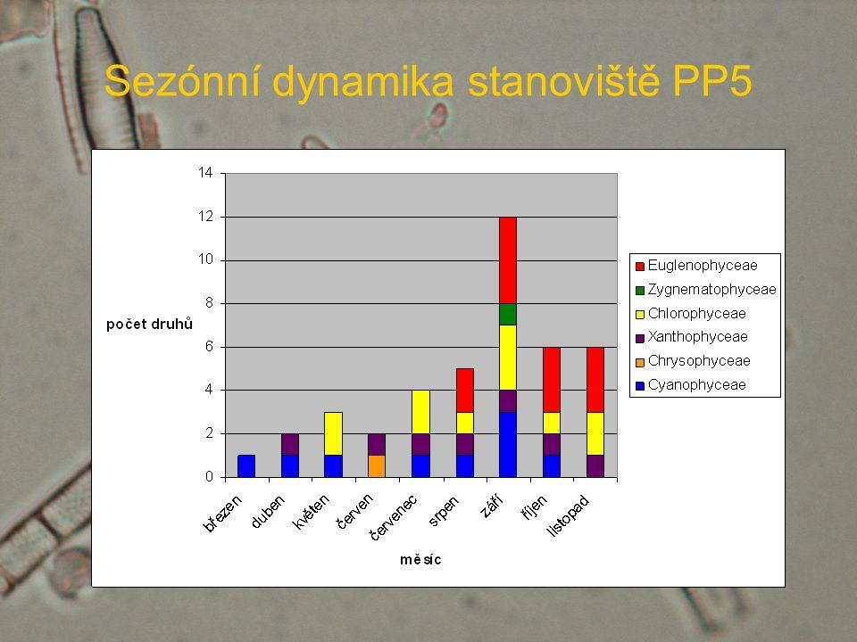 Sezónní dynamika stanoviště PP5