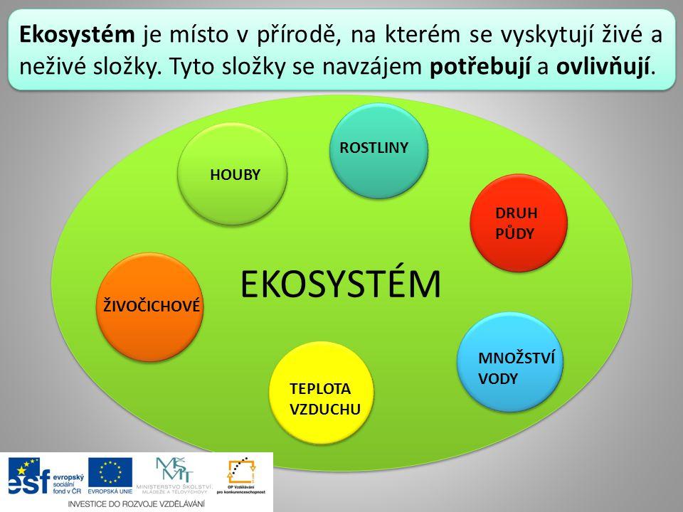 Ekosystém je místo v přírodě, na kterém se vyskytují živé a neživé složky. Tyto složky se navzájem potřebují a ovlivňují. EKOSYSTÉM ŽIVOČICHOVÉ HOUBY