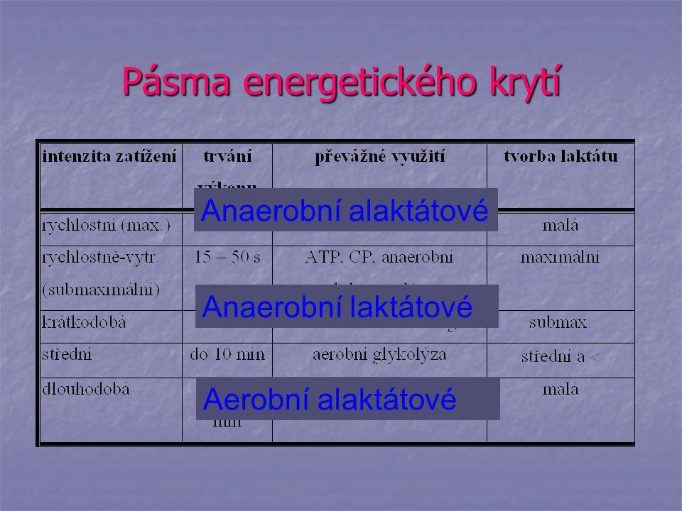 Pásma energetického krytí Anaerobní alaktátové Anaerobní laktátové Aerobní alaktátové