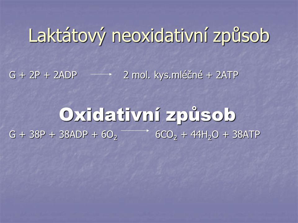 Laktátový neoxidativní způsob G + 2P + 2ADP 2 mol. kys.mléčné + 2ATP Oxidativní způsob G + 38P + 38ADP + 6O 2 6CO 2 + 44H 2 O + 38ATP