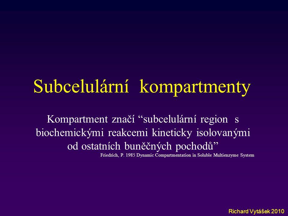"""Subcelulární kompartmenty Richard Vytášek 2010 Kompartment značí """"subcelulární region s biochemickými reakcemi kineticky isolovanými od ostatních buně"""