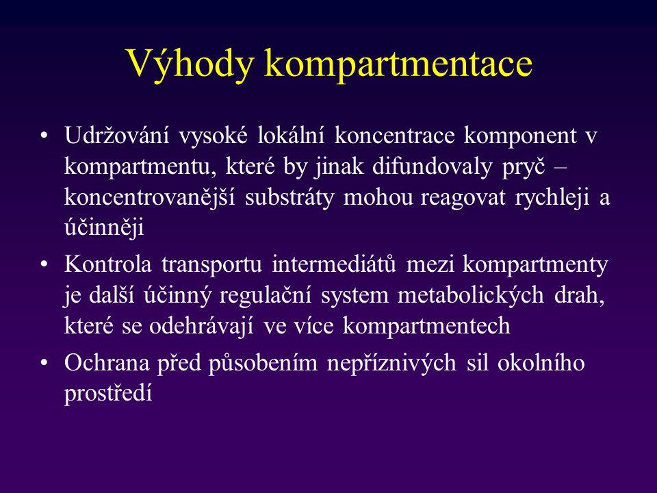 Výhody kompartmentace Udržování vysoké lokální koncentrace komponent v kompartmentu, které by jinak difundovaly pryč – koncentrovanější substráty moho