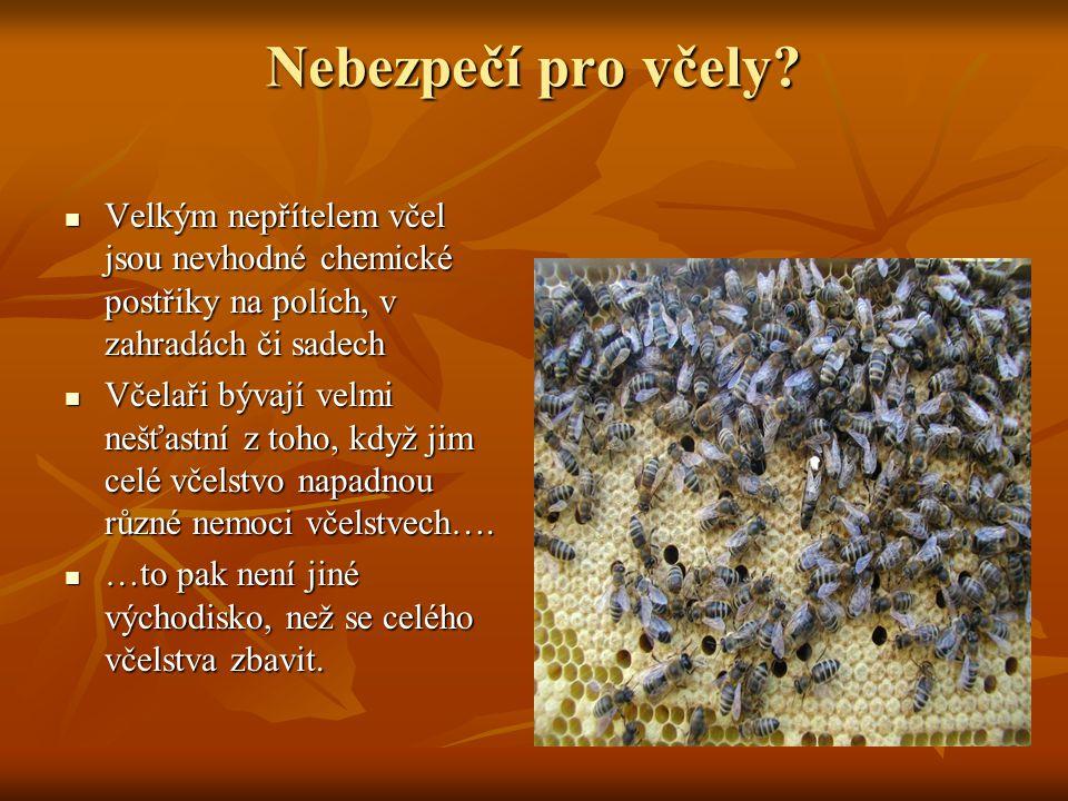 Nebezpečí pro včely? Velkým nepřítelem včel jsou nevhodné chemické postřiky na polích, v zahradách či sadech Velkým nepřítelem včel jsou nevhodné chem