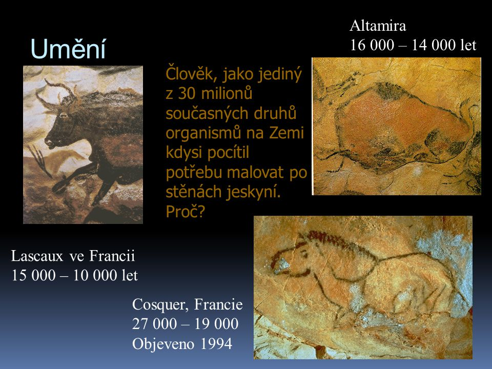 Umění Lascaux ve Francii 15 000 – 10 000 let Altamira 16 000 – 14 000 let Cosquer, Francie 27 000 – 19 000 Objeveno 1994 Člověk, jako jediný z 30 mili