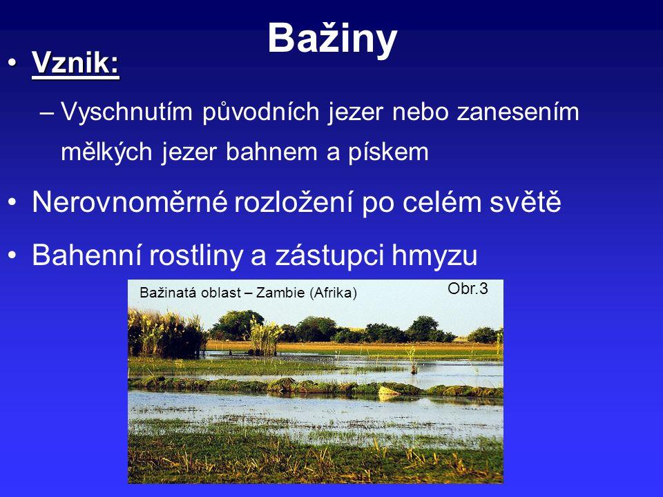 Bažiny Vznik:Vznik: –Vyschnutím původních jezer nebo zanesením mělkých jezer bahnem a pískem Nerovnoměrné rozložení po celém světě Bahenní rostliny a zástupci hmyzu Obr.3 Bažinatá oblast – Zambie (Afrika)