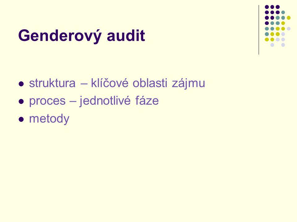 Genderový audit struktura – klíčové oblasti zájmu proces – jednotlivé fáze metody
