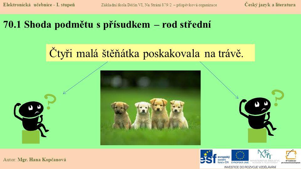 70.1 Shoda podmětu s přísudkem – rod střední Elektronická učebnice - I.