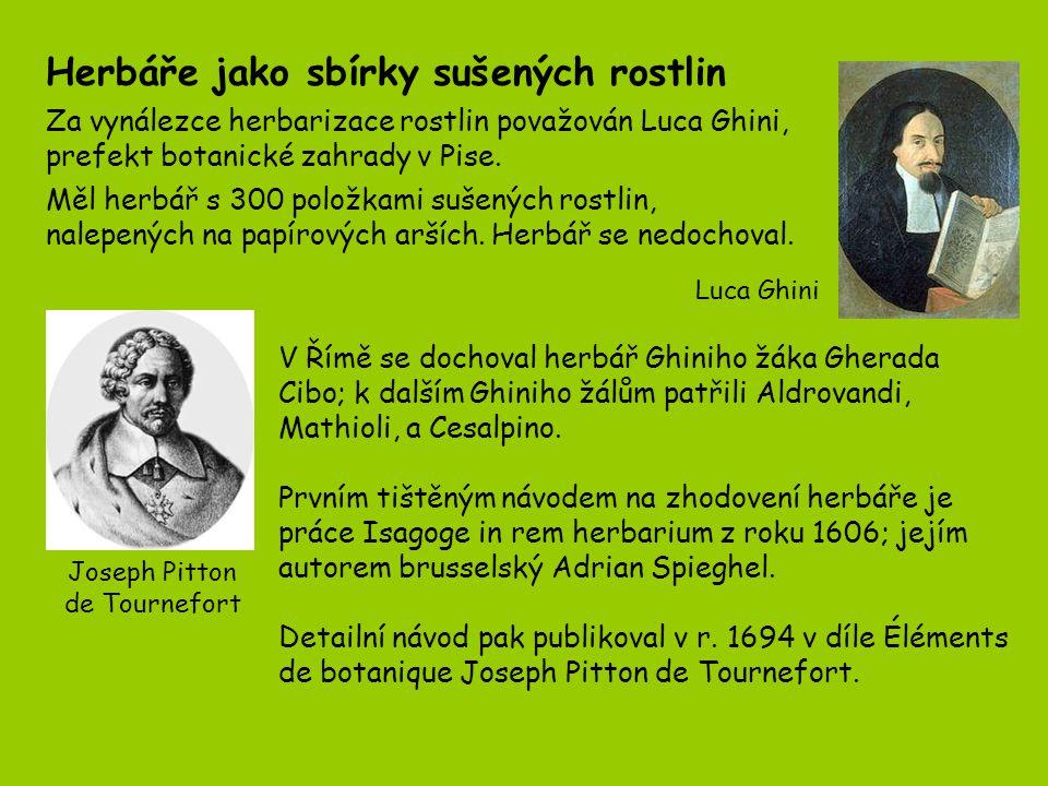 Hugo de Vries, 1848 - 1935 Johann Gregor Mendel 1882 - 1884 1865 Johann Gregor Mendel uveřejnil výsledky svých studií o dědičnosti u rostlin.