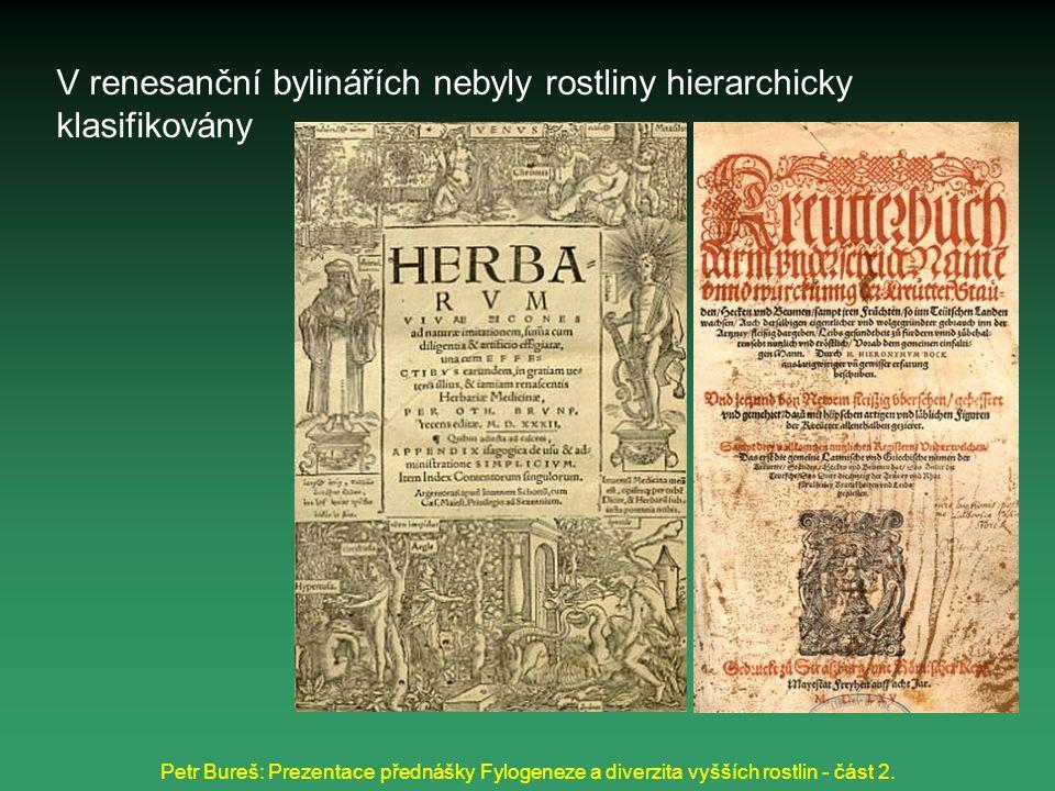 Petr Bureš: Prezentace přednášky Fylogeneze a diverzita vyšších rostlin - část 2. V renesanční bylinářích nebyly rostliny hierarchicky klasifikovány
