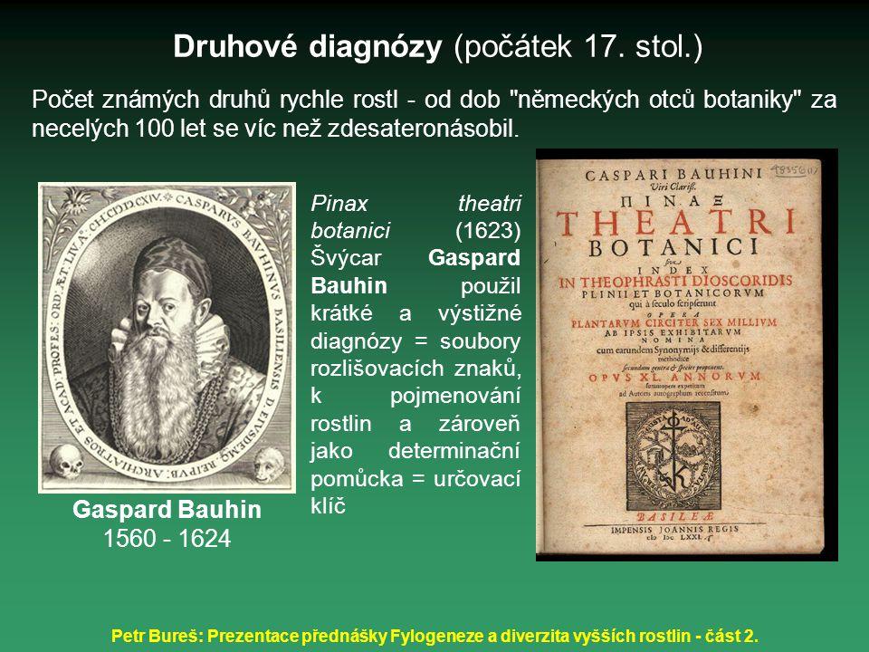 Petr Bureš: Prezentace přednášky Fylogeneze a diverzita vyšších rostlin - část 2. Počet známých druhů rychle rostl - od dob