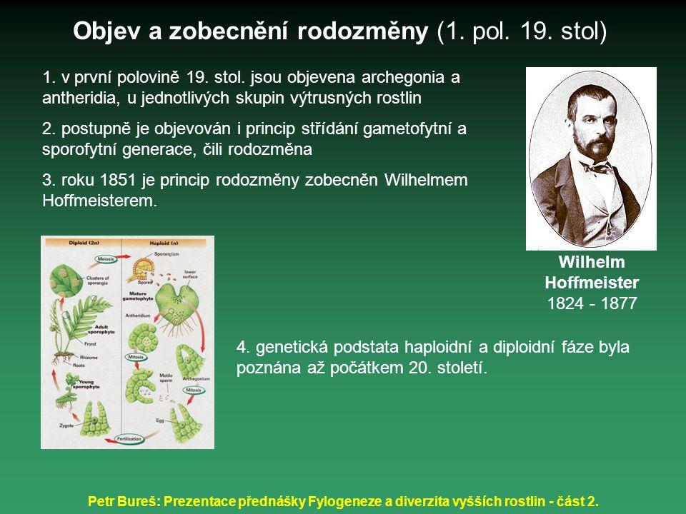 Petr Bureš: Prezentace přednášky Fylogeneze a diverzita vyšších rostlin - část 2. 1. v první polovině 19. stol. jsou objevena archegonia a antheridia,