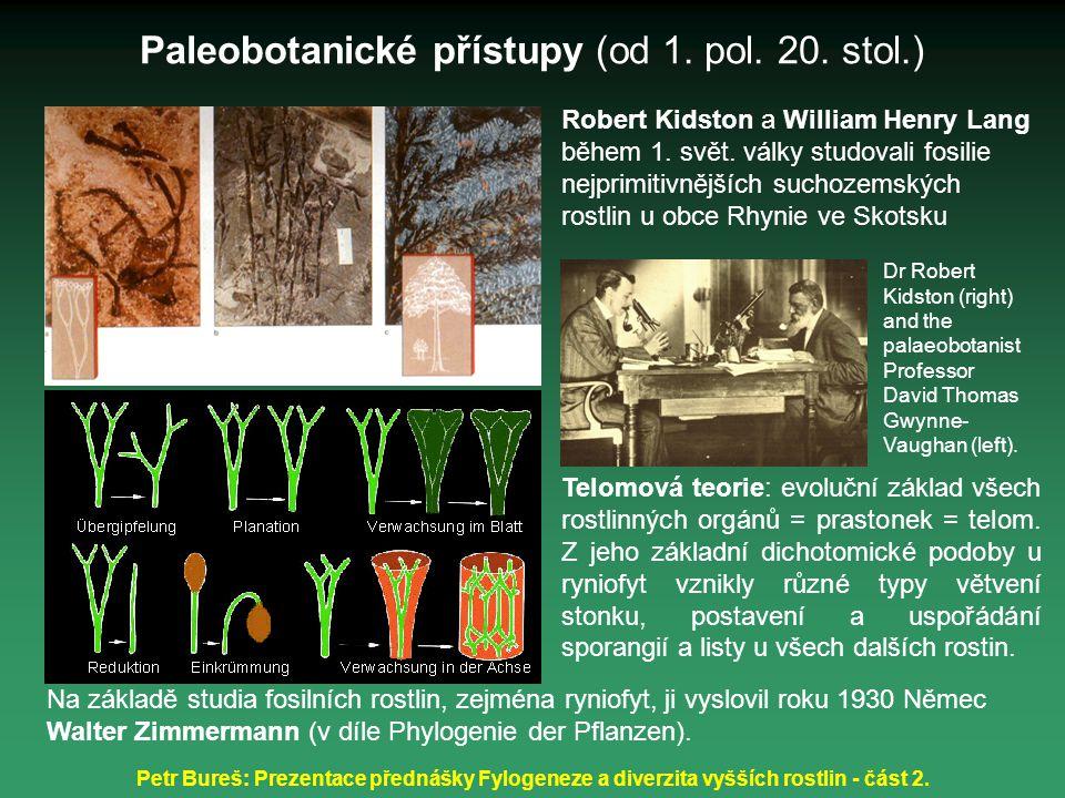 Petr Bureš: Prezentace přednášky Fylogeneze a diverzita vyšších rostlin - část 2. Na základě studia fosilních rostlin, zejména ryniofyt, ji vyslovil r
