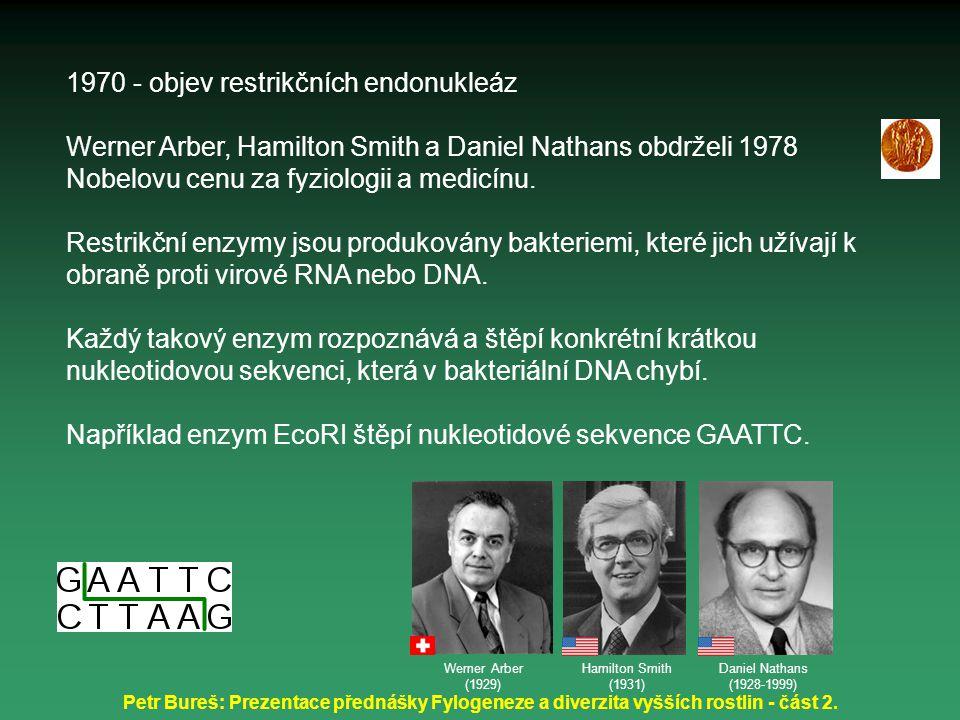 1970 - objev restrikčních endonukleáz Werner Arber, Hamilton Smith a Daniel Nathans obdrželi 1978 Nobelovu cenu za fyziologii a medicínu. Restrikční e