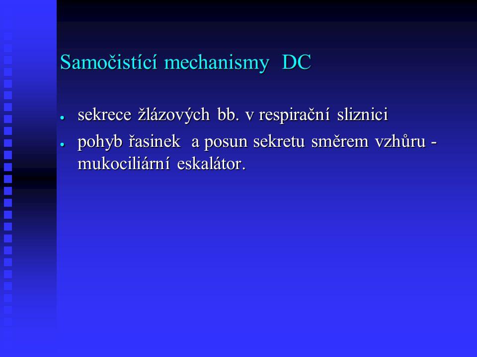 Samočistící mechanismy DC ● sekrece žlázových bb.