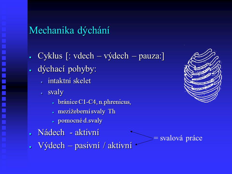Mechanika dýchání ● Cyklus [: vdech – výdech – pauza:] ● dýchací pohyby: ● intaktní skelet ● svaly ● bránice C1-C4, n.phrenicus, ● mezižeberní svaly Th ● pomocné d.svaly ● Nádech - aktivní ● Výdech – pasivní / aktivní = svalová práce