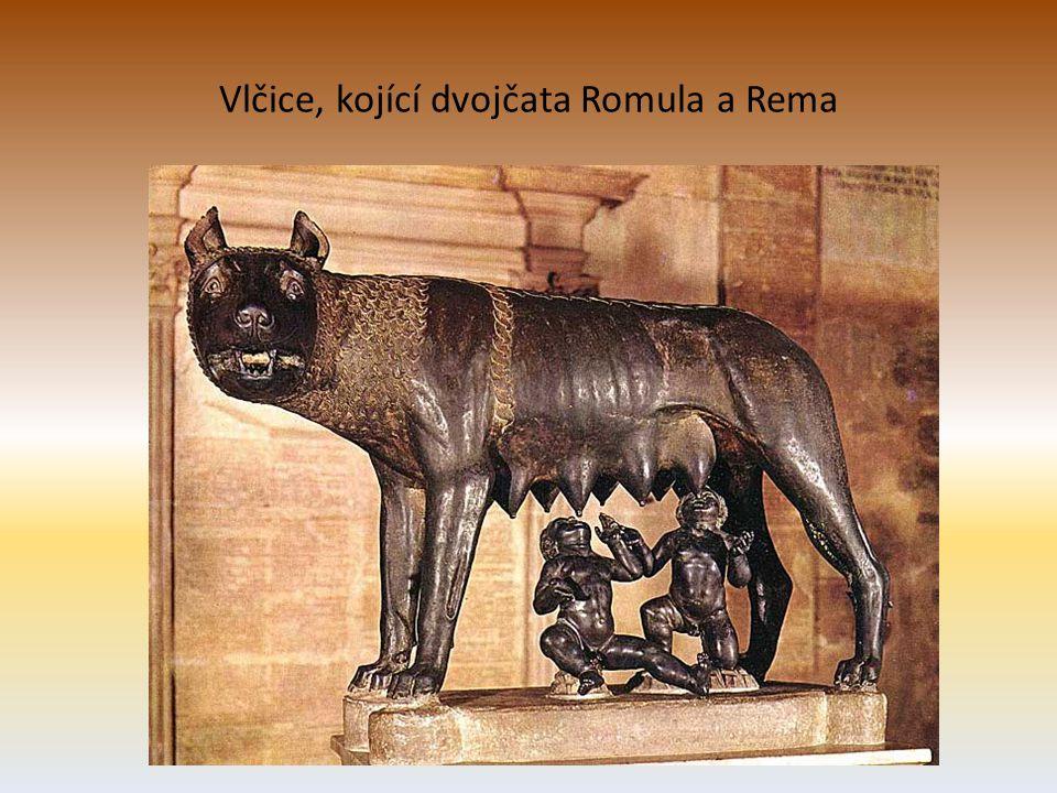 Vlčice, kojící dvojčata Romula a Rema