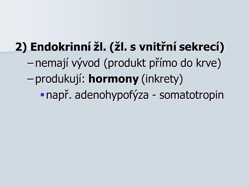 (žl. s vnitřní sekrecí) 2) Endokrinní žl. (žl. s vnitřní sekrecí) –nemají vývod (produkt přímo do krve) –produkují: hormony (inkrety)  např. adenohyp