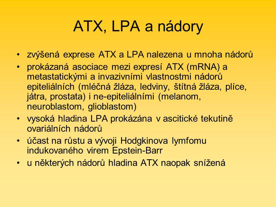 ATX, LPA a nádory zvýšená exprese ATX a LPA nalezena u mnoha nádorů prokázaná asociace mezi expresí ATX (mRNA) a metastatickými a invazivními vlastnostmi nádorů epiteliálních (mléčná žláza, ledviny, štítná žláza, plíce, játra, prostata) i ne-epiteliálními (melanom, neuroblastom, glioblastom) vysoká hladina LPA prokázána v ascitické tekutině ovariálních nádorů účast na růstu a vývoji Hodgkinova lymfomu indukovaného virem Epstein-Barr u některých nádorů hladina ATX naopak snížená