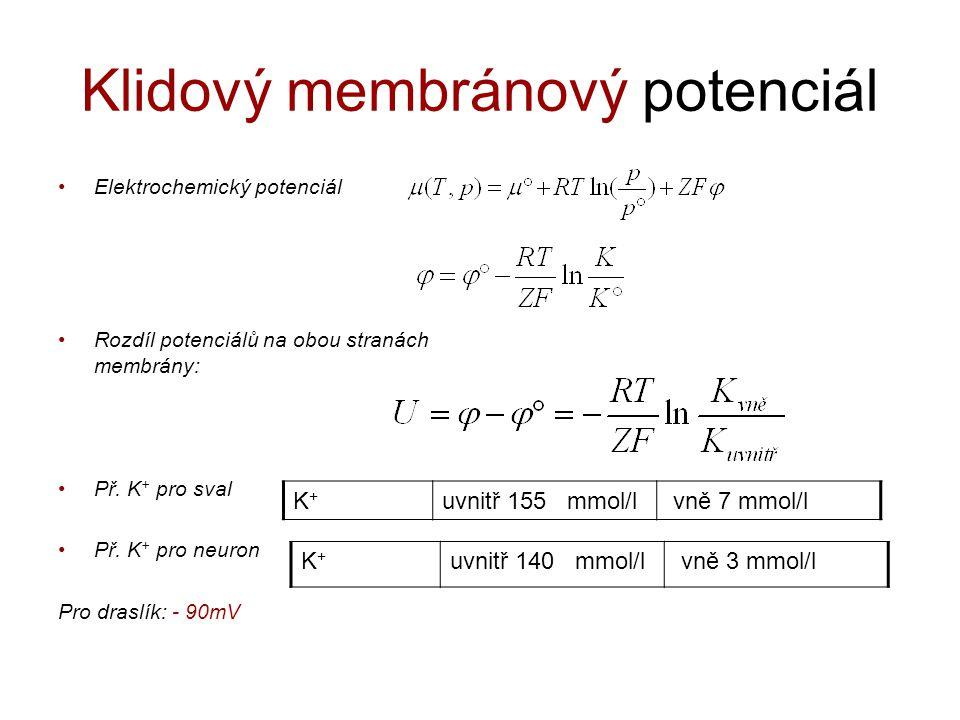 Klidový membránový potenciál Elektrochemický potenciál Rozdíl potenciálů na obou stranách membrány: Př. K + pro sval Př. K + pro neuron Pro draslík: -