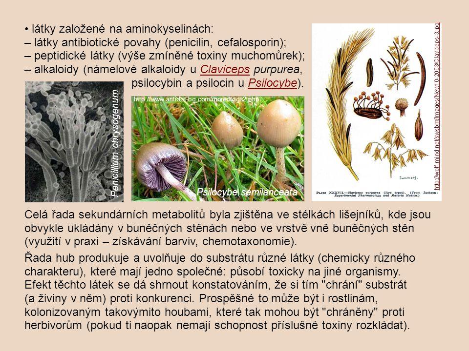 látky založené na aminokyselinách: – látky antibiotické povahy (penicilin, cefalosporin); – peptidické látky (výše zmíněné toxiny muchomůrek); – alkal