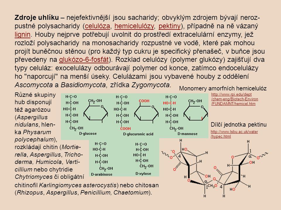 Zdroje uhlíku – nejefektivnější jsou sacharidy; obvyklým zdrojem bývají neroz- pustné polysacharidy (celulóza, hemicelulózy, pektiny), případně na ně