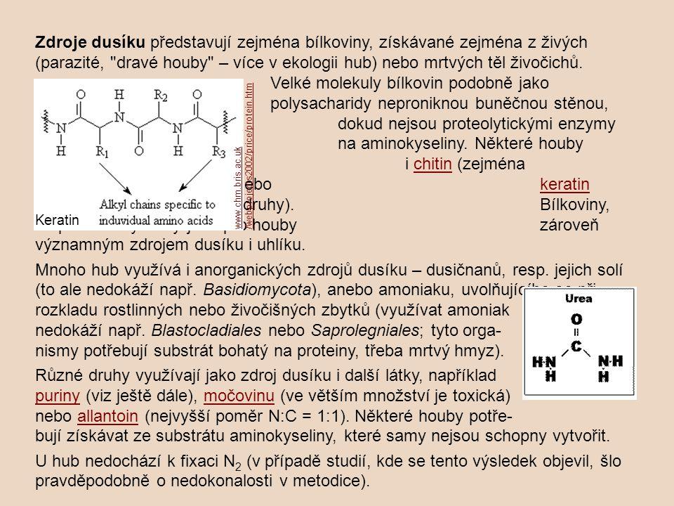 Zdroje dusíku představují zejména bílkoviny, získávané zejména z živých (parazité,