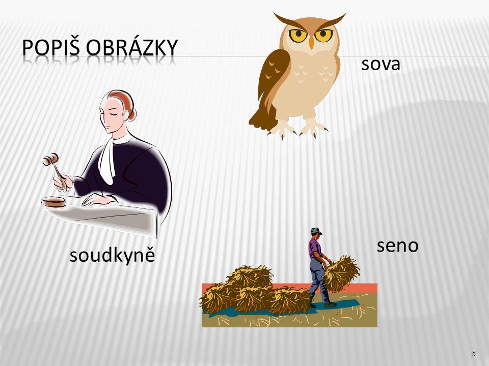 sova 5 soudkyně seno