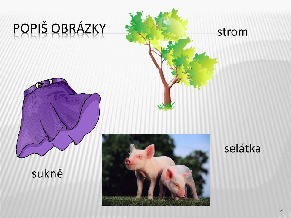 strom 8 sukně selátka