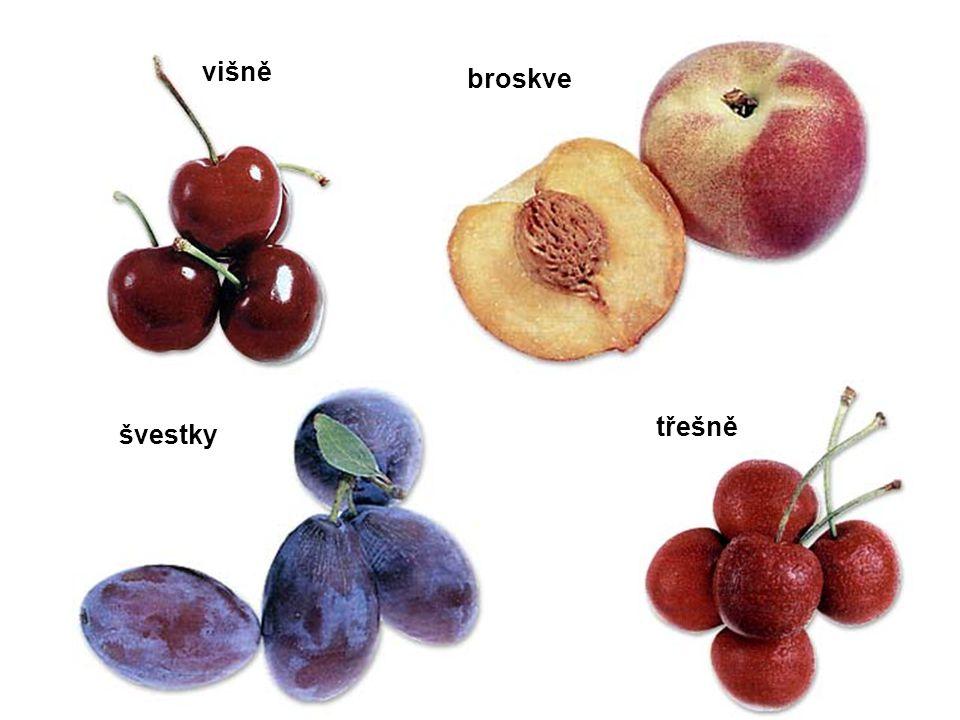 višně broskve švestky třešně