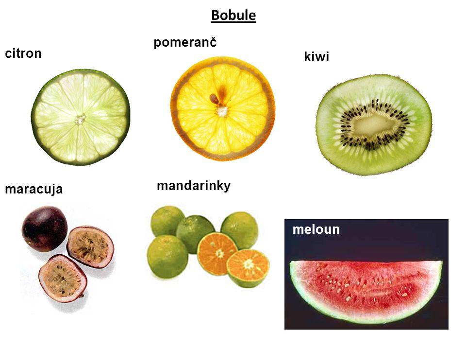 Bobule citron pomeranč kiwi maracuja mandarinky meloun