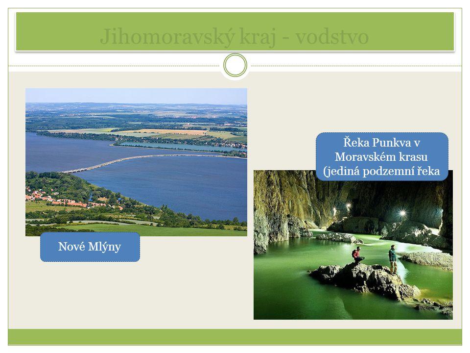 Jihomoravský kraj - vodstvo Nové Mlýny Řeka Punkva v Moravském krasu (jediná podzemní řeka