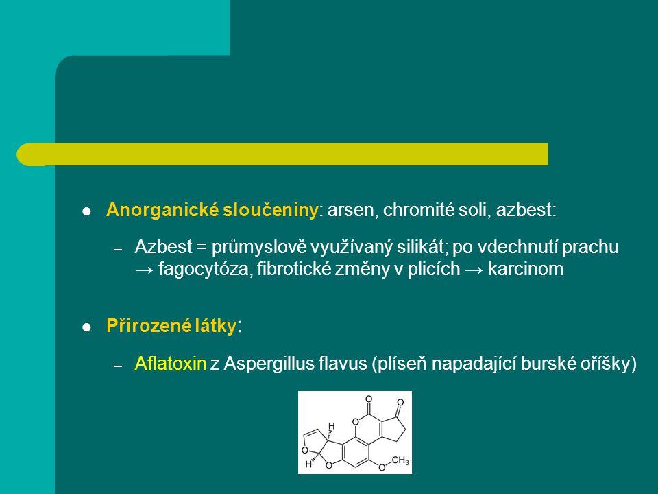 Anorganické sloučeniny: arsen, chromité soli, azbest: – Azbest = průmyslově využívaný silikát; po vdechnutí prachu → fagocytóza, fibrotické změny v pl