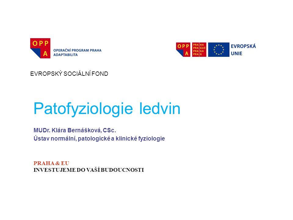 Patofyziologie ledvin EVROPSKÝ SOCIÁLNÍ FOND PRAHA & EU INVESTUJEME DO VAŠÍ BUDOUCNOSTI MUDr. Klára Bernášková, CSc. Ústav normální, patologické a kli