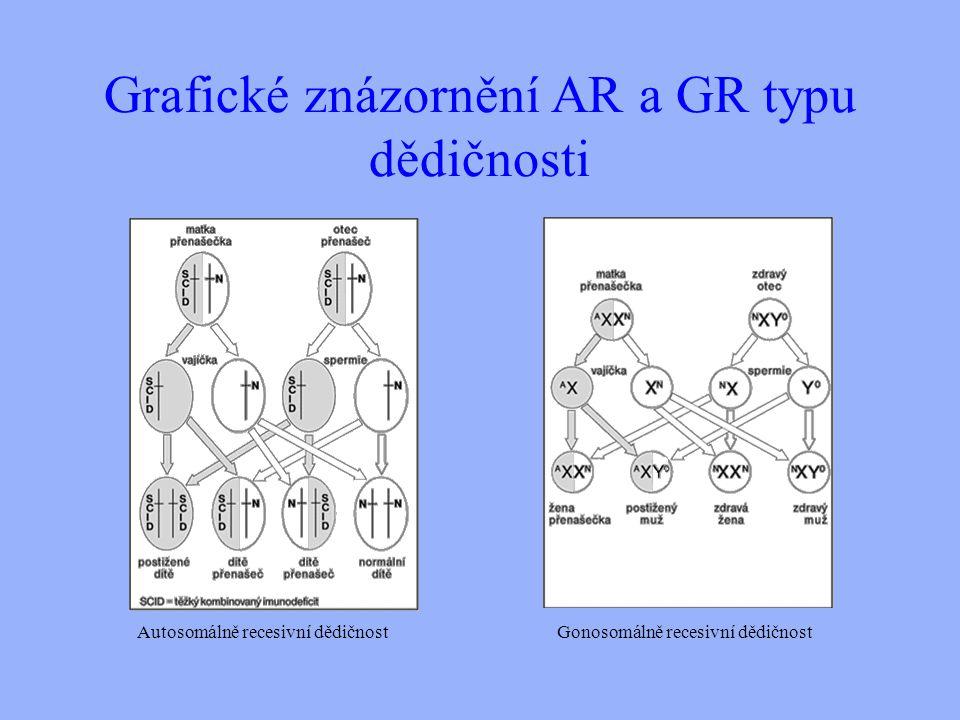Grafické znázornění AR a GR typu dědičnosti Autosomálně recesivní dědičnostGonosomálně recesivní dědičnost