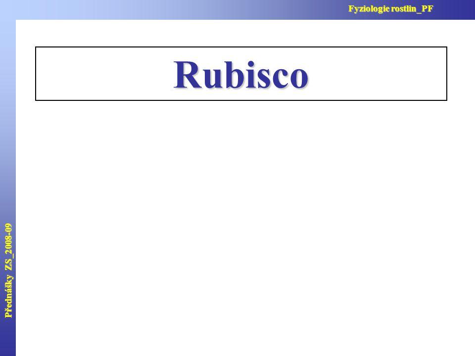 Rubisco Přednášky ZS_2008-09 Fyziologie rostlin_PF