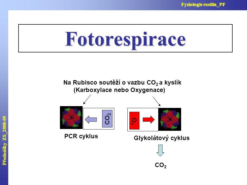Fotorespirace Na Rubisco soutěží o vazbu CO 2 a kyslík (Karboxylace nebo Oxygenace) PCR cyklus Glykolátový cyklus Přednášky ZS_2008-09 Fyziologie rost