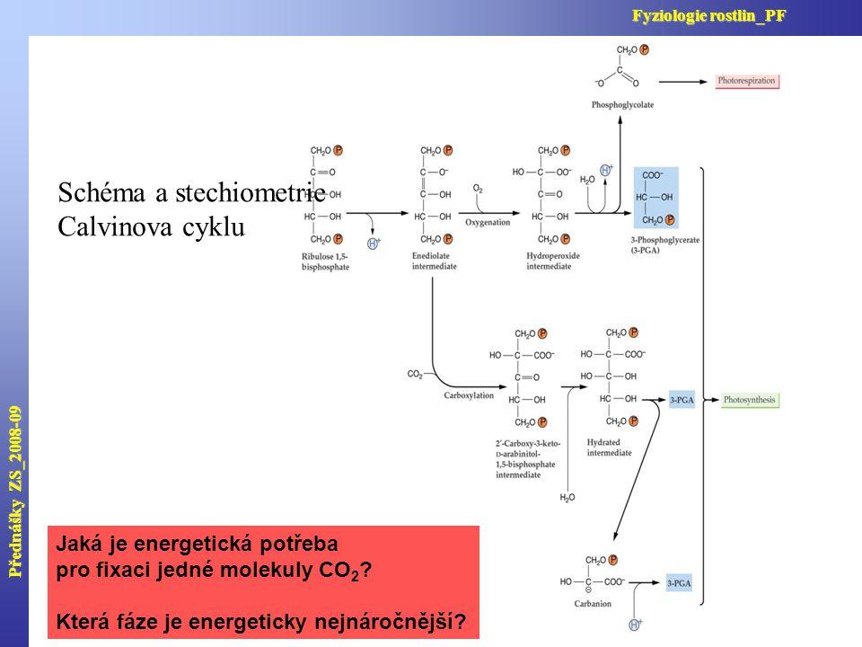 Schéma a stechiometrie Calvinova cyklu Přednášky ZS_2008-09 Fyziologie rostlin_PF Jaká je energetická potřeba pro fixaci jedné molekuly CO 2 ? Která f