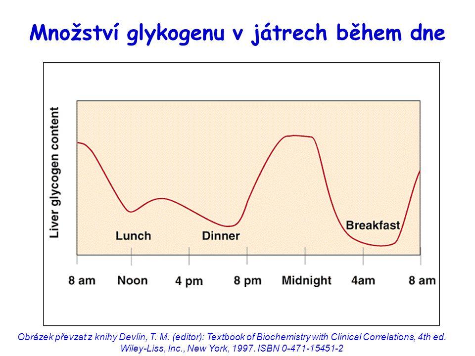 Množství glykogenu v játrech během dne Obrázek převzat z knihy Devlin, T.